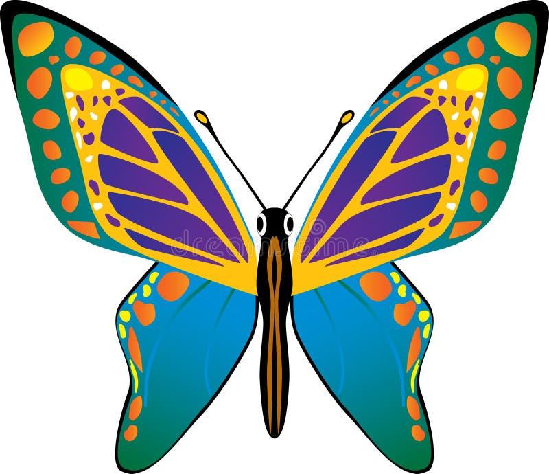 fjärilsvektor vektor illustrationer
