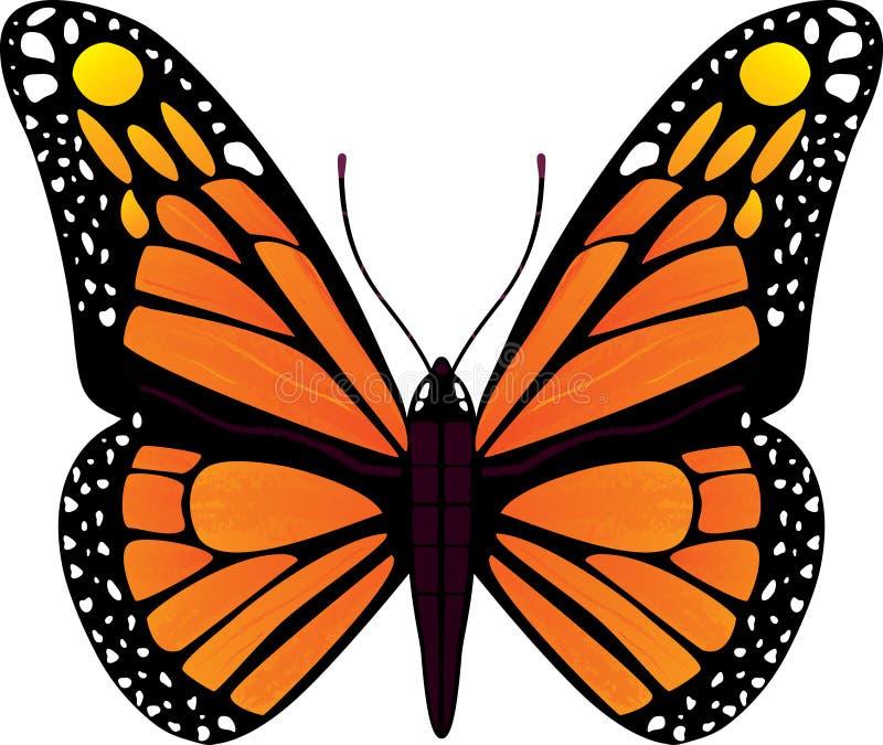 Fjärilsvektorillustration stock illustrationer