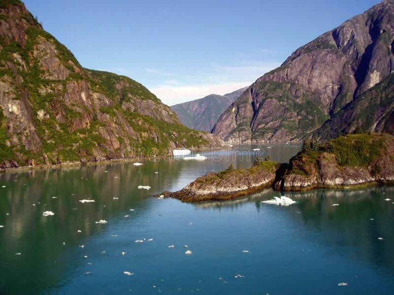Fjord do braço de Tracy, Alaska fotografia de stock royalty free