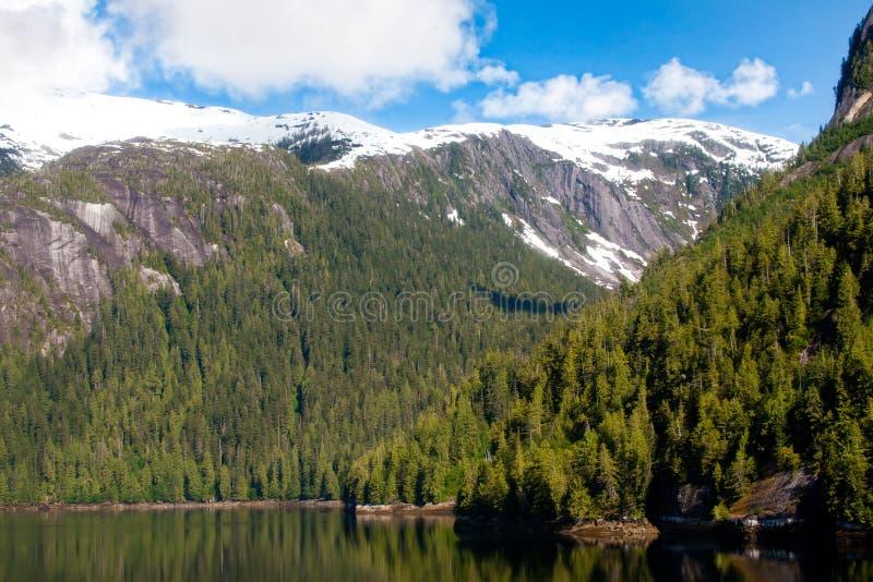 Fjord enevoado, Alaska imagem de stock