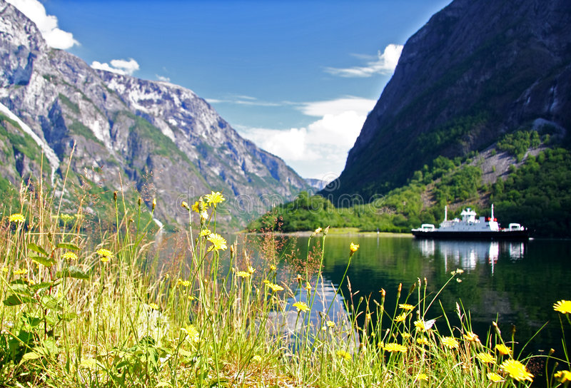 fjord norway royaltyfri foto