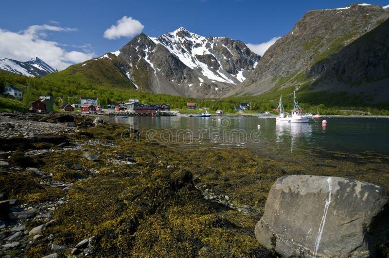 fjord norweg zdjęcie royalty free