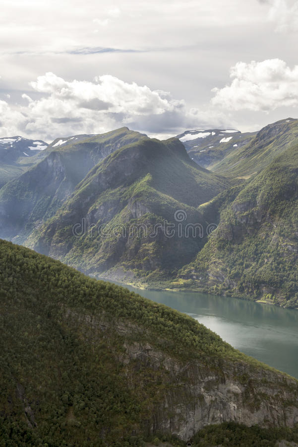 Fjord in southern Norway. On a sunny day. It´s a vertical picture royalty free stock images