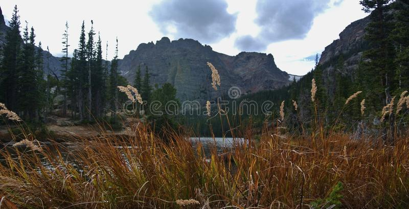 Fjorden, Rocky Mountain National Park, Estes Park Colorado royaltyfria bilder