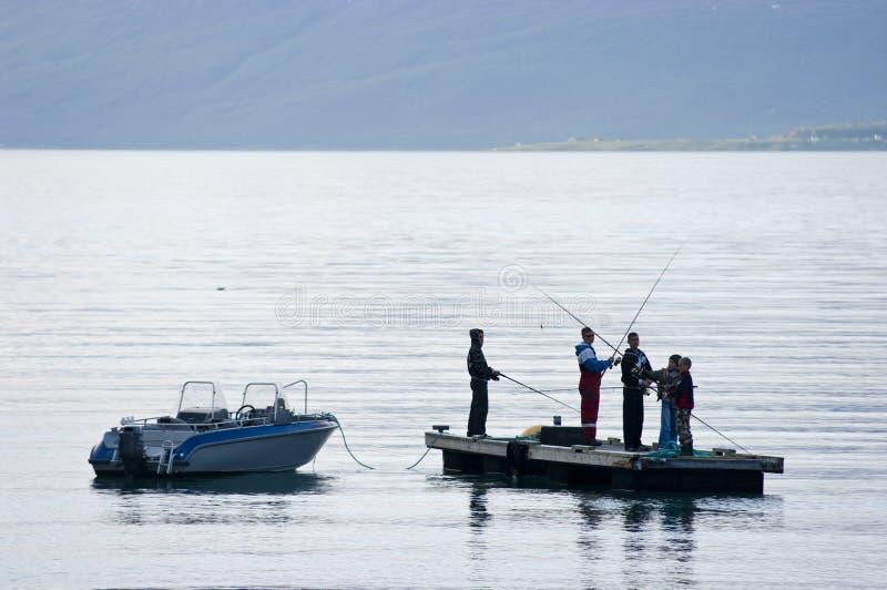 Fjordfischen lizenzfreie stockfotos
