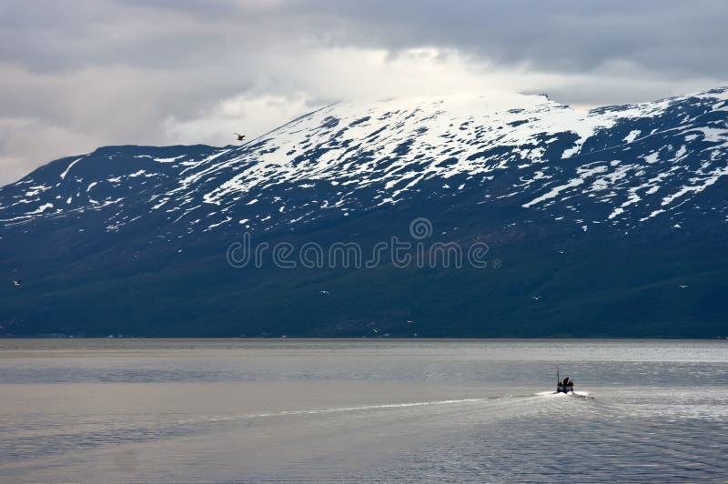 fjordnorrman royaltyfri bild