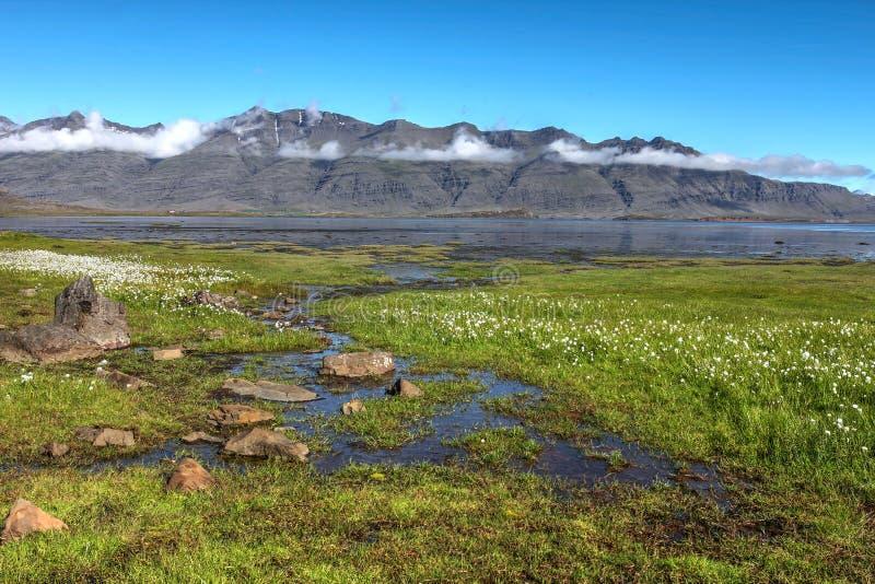 Fjords landscape, Iceland stock photos