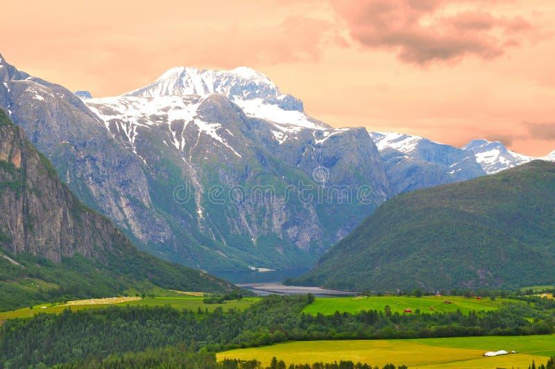 fjords norway royaltyfri bild