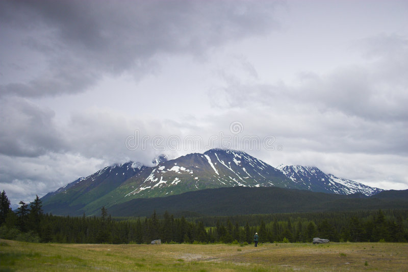 Fjords NP de Kenai photographie stock
