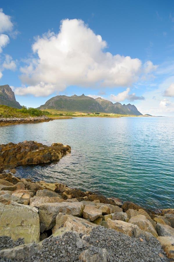 Fjordufer in Norwegen lizenzfreie stockfotografie