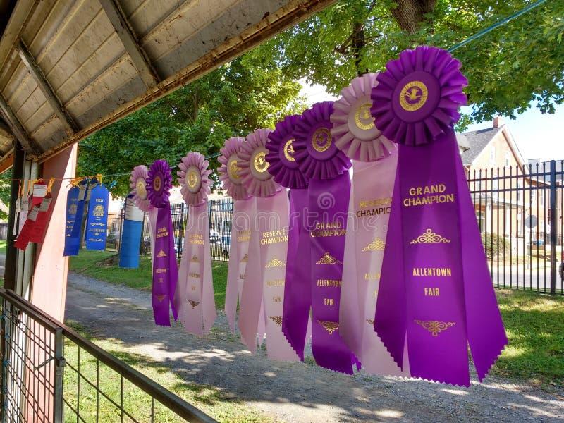 Flámula triple Rosette Ribbons Awarded en una feria del condado foto de archivo libre de regalías