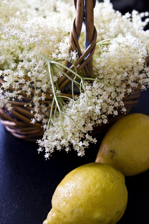 Fläderbärblom med citroner för hemlagad sund sirap arkivbild