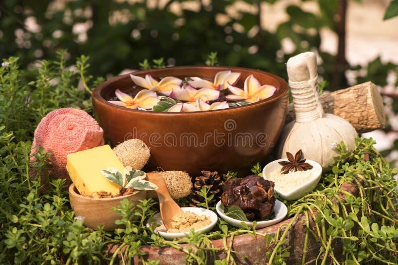 Flå Spa med Thanaka, tvål och tamarindfrukt, brunnsortbehandlingar på naturlig bakgrund arkivbild