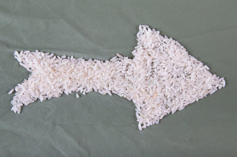 Flèche de riz photo libre de droits