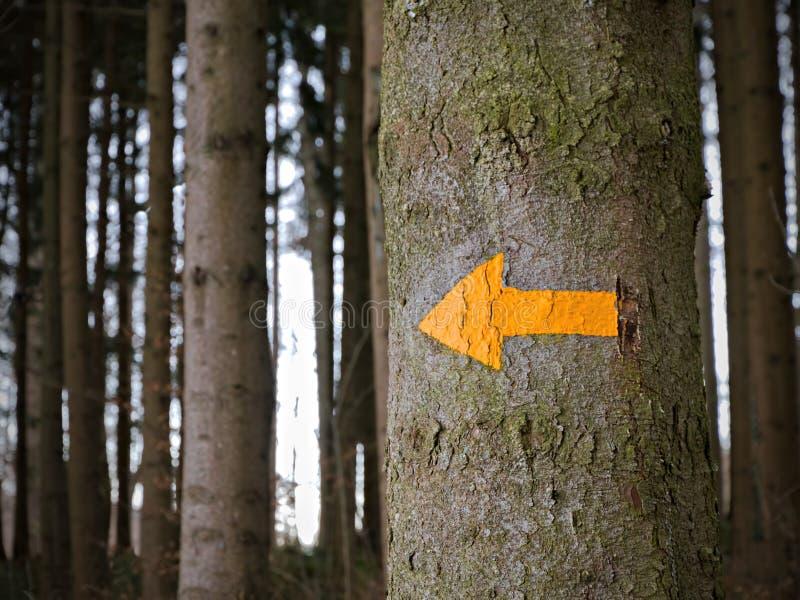 Flèche jaune donnant des sens, photos libres de droits