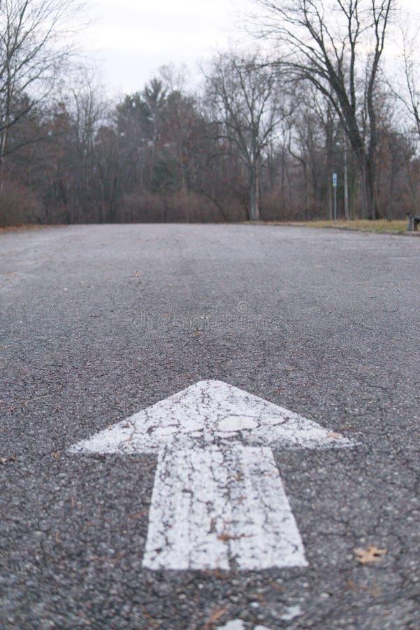 Flèche sur le trottoir se dirigeant dans la forêt photo stock