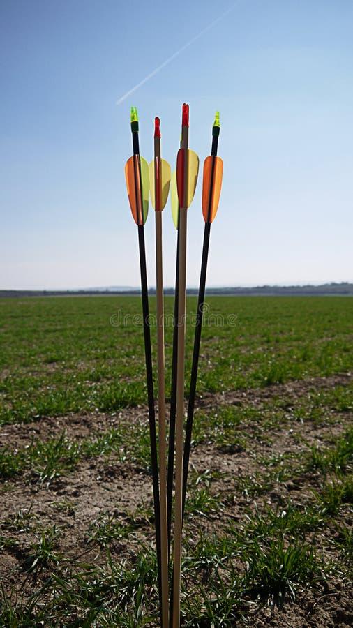 Flèches de couleur pour le tir à l'arc photographie stock