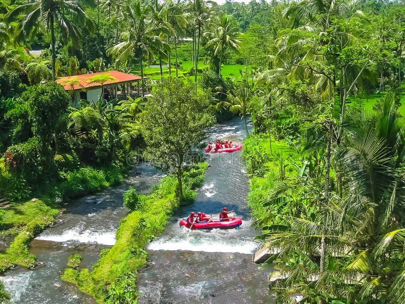 Flößen in der Schlucht auf Balis Gebirgsfluß lizenzfreie stockfotografie