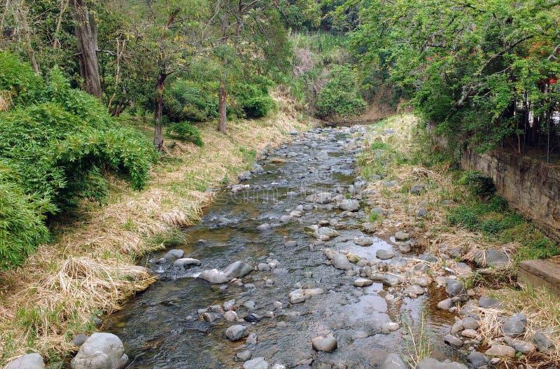 flödande flod arkivbild