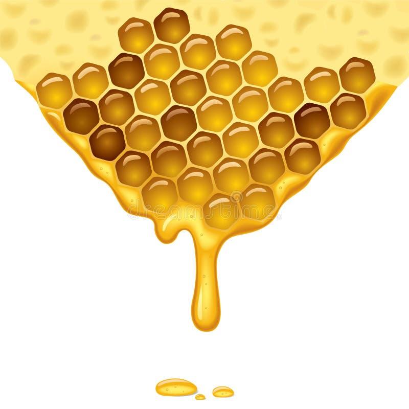 flödande honung royaltyfri illustrationer