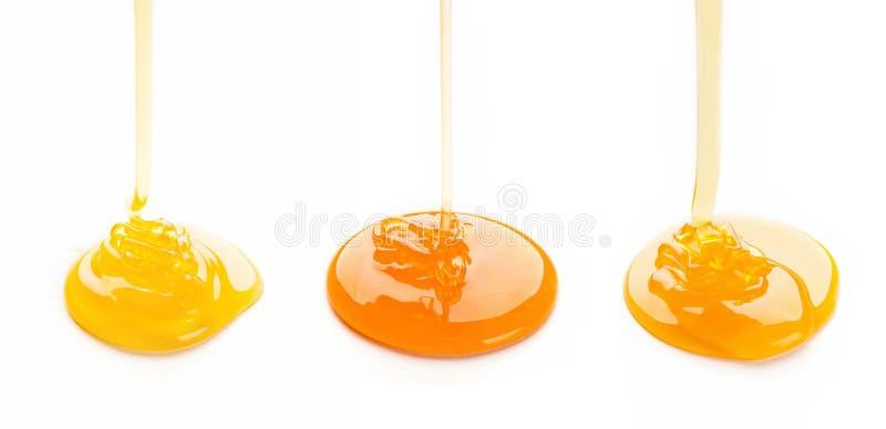 Flödande honung som isoleras på vit bakgrund royaltyfri bild