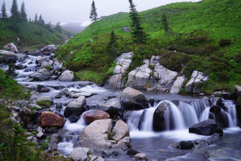 Flödande ström i mer regnig nationalpark för Mt arkivfoto