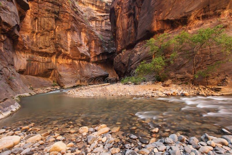 flödande utomhus- flodvatten för kanjon arkivbilder