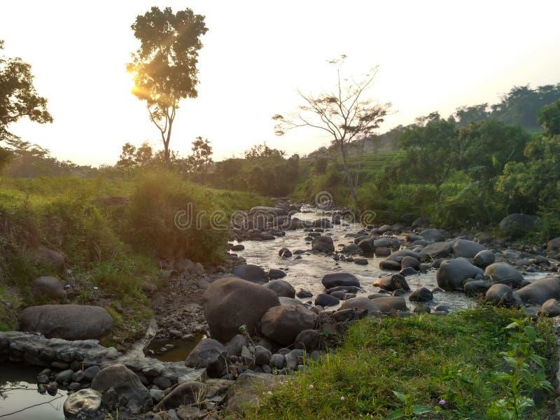 Flöden för morgonsolskenflod arkivbild
