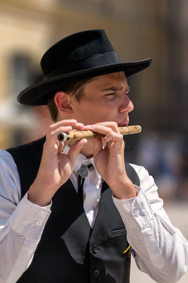 Flöjtspelare i den traditionella Provencal klänningen arkivbilder