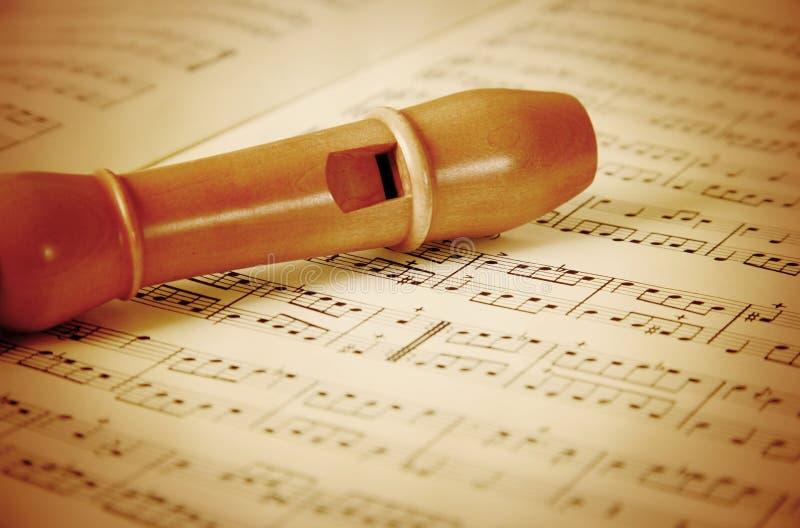 Flöte im Holz lizenzfreies stockfoto