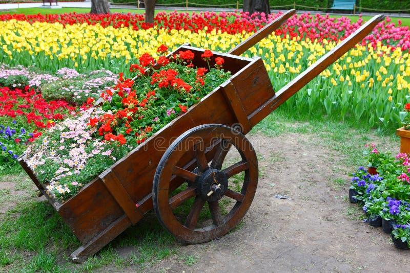 Flöten i trädgårdar royaltyfria foton