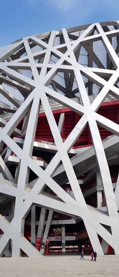 Flüchtig das Nest, Peking-Nationalstadion stockbild