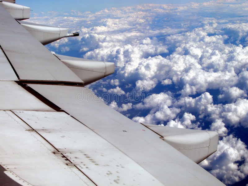 Flügel lizenzfreies stockfoto