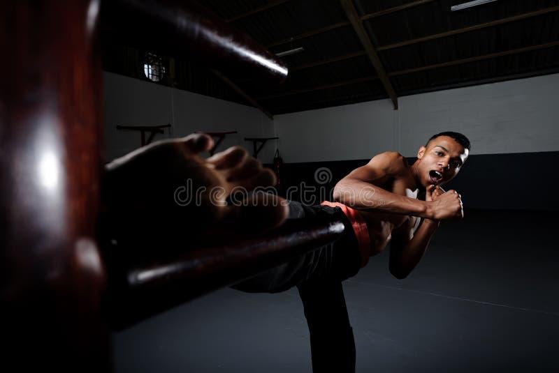 Flügel Chun Kung Fu lizenzfreie stockfotografie
