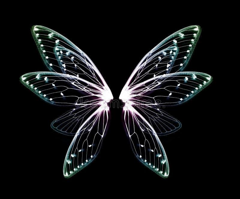 Flügel der Insektenzikade auf schwarzem bacground lizenzfreies stockfoto
