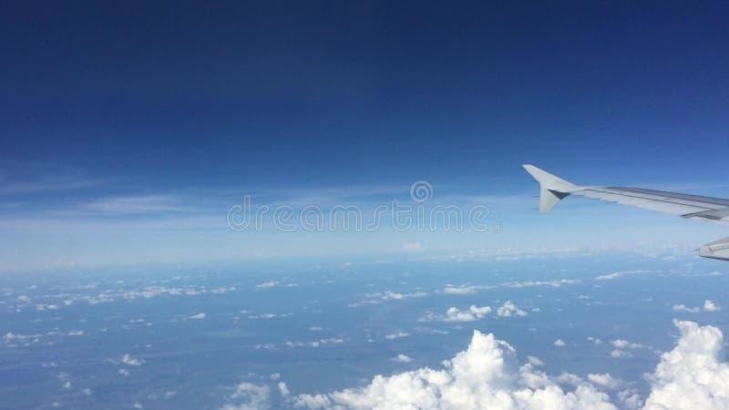 Flügel eines Flugzeuges stock video