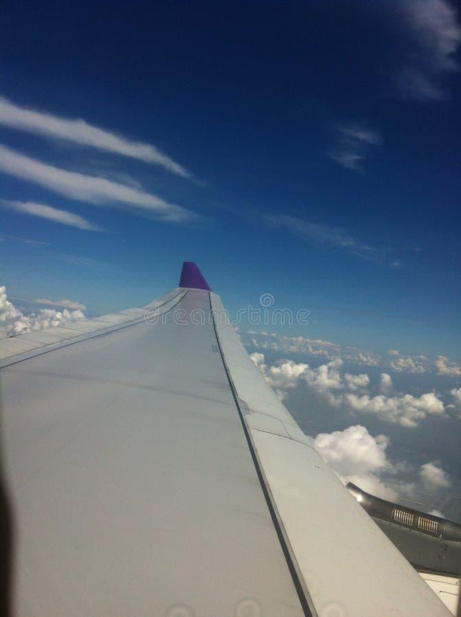 Flügel von Flugzeugen stockbilder