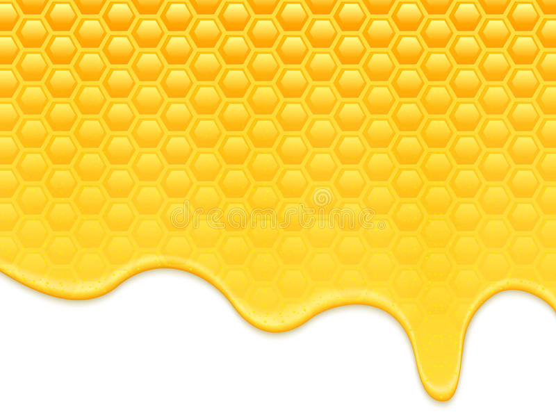 Flüssige Bienenwaben des Honigs vektor abbildung