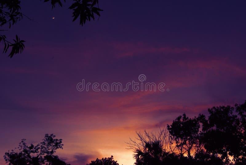 FL温暖的夜空 免版税库存图片