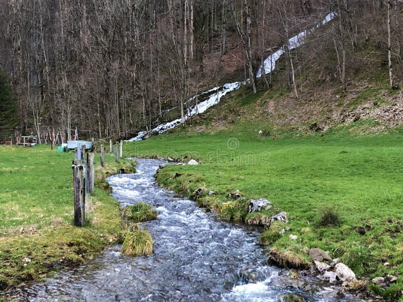 Fl?ssige Quelle Tschuder mit Wasserfall und Karstfr?hling oder Karstquelle Tschuder, Schwende der Wasserversorgung stockfotografie