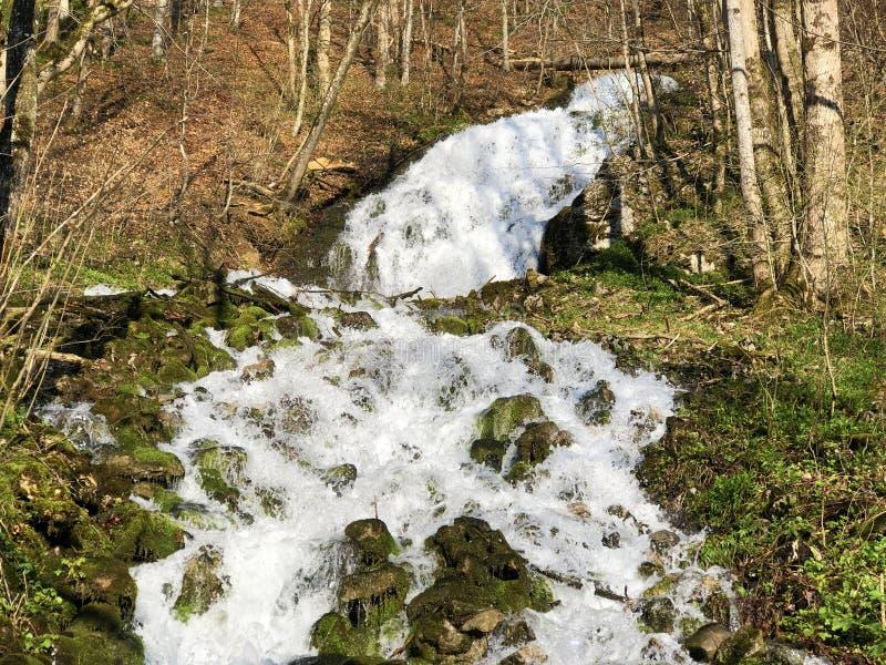 Fl?ssige Quelle Tschuder mit Wasserfall und Karstfr?hling oder Karstquelle Tschuder, Schwende der Wasserversorgung lizenzfreies stockfoto
