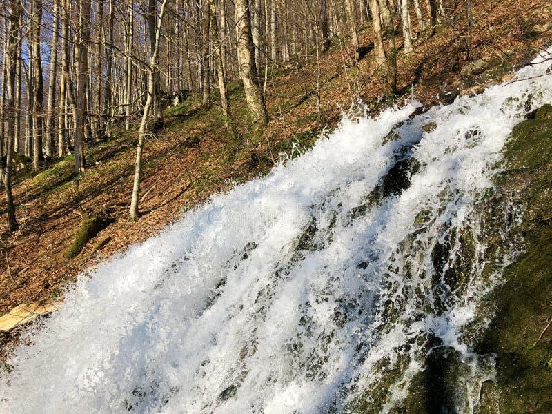 Fl?ssige Quelle Tschuder mit Wasserfall und Karstfr?hling oder Karstquelle Tschuder, Schwende der Wasserversorgung stockbilder