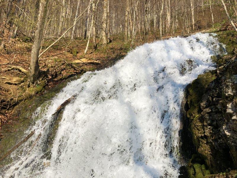Fl?ssige Quelle Tschuder mit Wasserfall und Karstfr?hling oder Karstquelle Tschuder, Schwende der Wasserversorgung lizenzfreie stockfotos