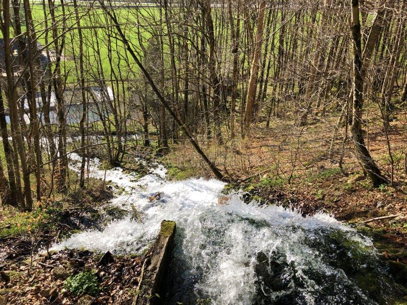 Fl?ssige Quelle Tschuder mit Wasserfall und Karstfr?hling oder Karstquelle Tschuder, Schwende der Wasserversorgung stockbild
