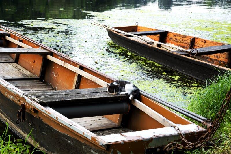 Flache Boote auf dem Stauwasser im Sommer stockfotos