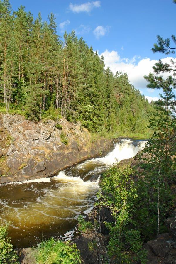 Flache Fälle auf den Fluss Kivach, Kareliya stockfotos