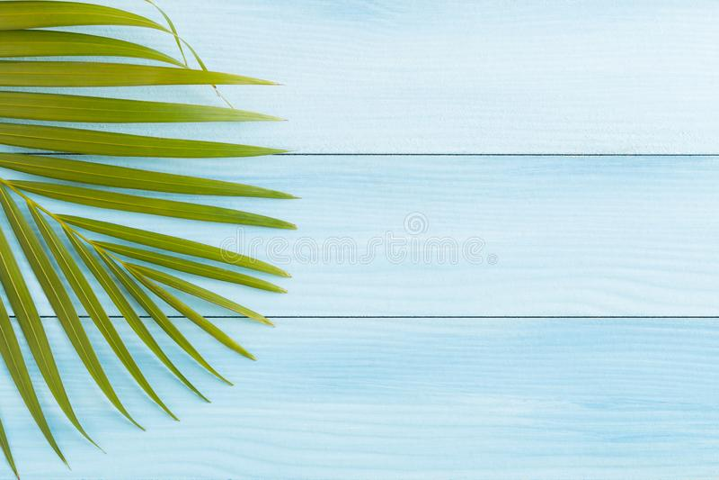 Flache gelegte Kokosnuss verlässt auf blauem Bretterboden, Draufsicht und Kopienraum, Sommerkonzept stockfotos