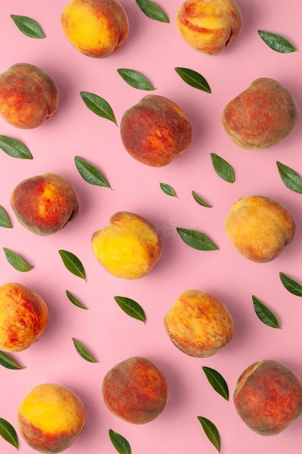 Flache gelegte Zusammensetzung mit Pfirsichen Reife saftige Pfirsiche mit grünen Blättern auf rosa Hintergrund Flache Lage, Drauf lizenzfreie stockbilder
