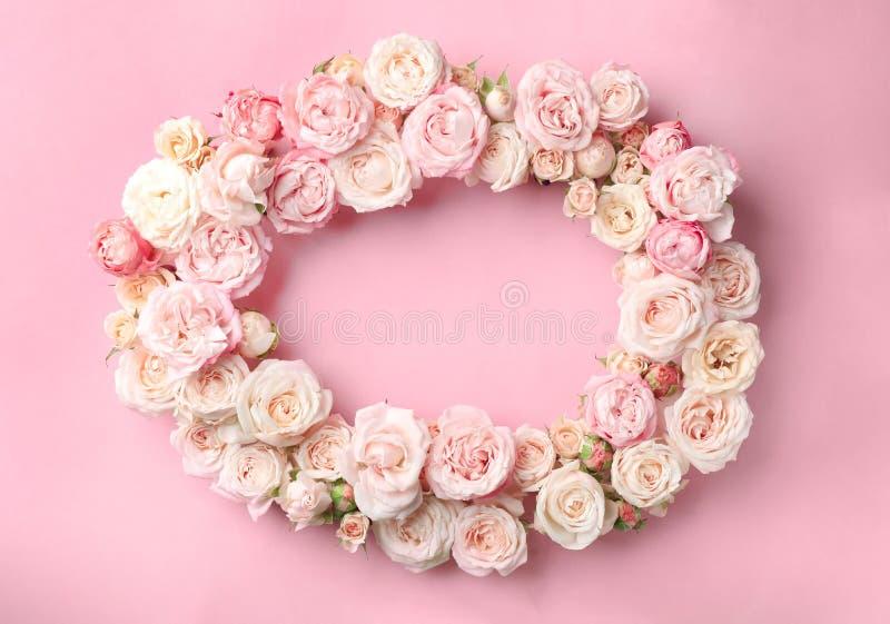 Flache gelegte Zusammensetzung mit schönen Rosen und Raum für Text stockfoto