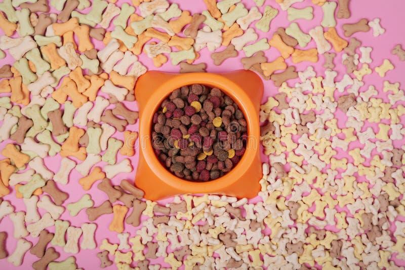 Flache gelegte Zusammensetzung mit Zusätzen für Hund und Katze, Spielwaren, trockene Nahrung, Kekse, Plätzchen, Nahrung für Haust stockfotografie
